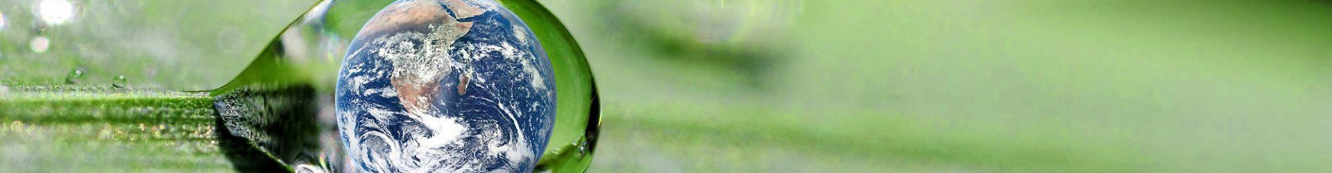 O compartilhamento verde
